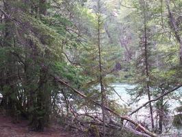 35 hectareas en costa rio azul - Imagen 9