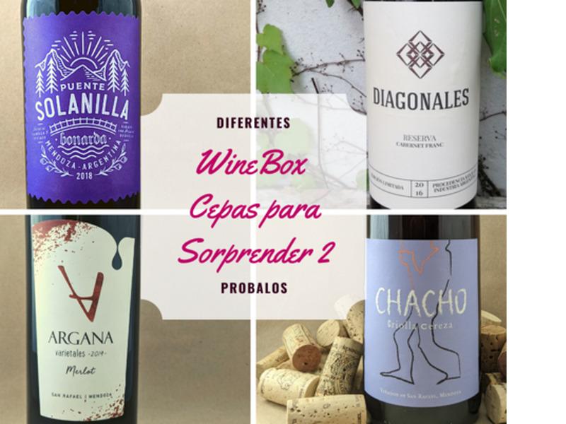 WineBox Cepas para Sorprender 2 - Caja de 6 vinos - 1