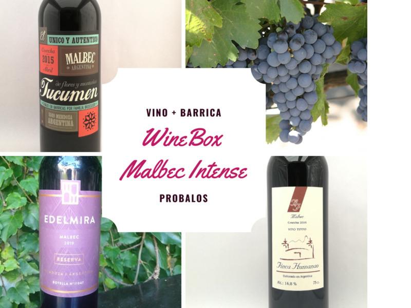 WineBox Malbec Intense - Caja de 6 vinos - 1