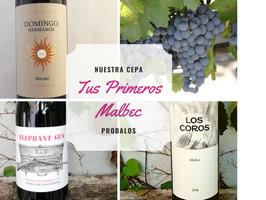 Tus primeros Malbec 1 - Caja de 6 vinos - Imagen 1