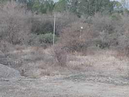Terreno en Santa Rosa de Calamuchita, Frente Rio - Imagen 4
