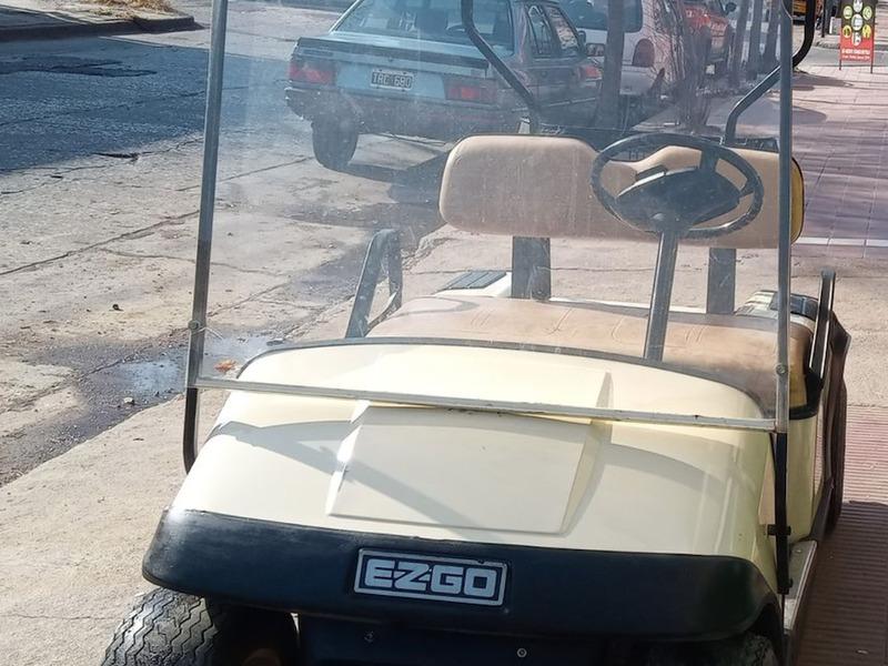 Carritos de Golf eléctricos - 6