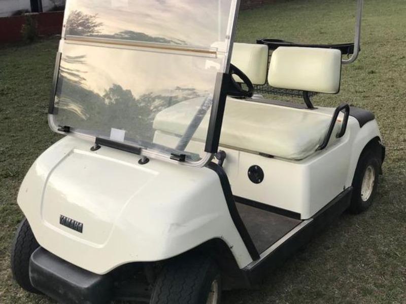 Carritos de Golf eléctricos - 8
